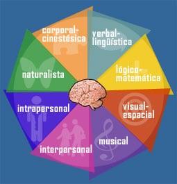Teoría de las inteligencias múltiples de Gardner -el prado psicólogos